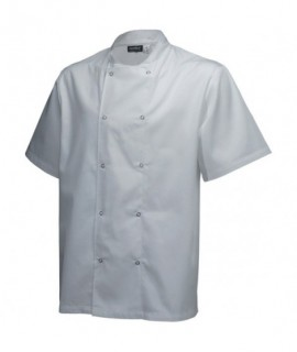 Basic Stud Jacket (Short Sleeve)White XL Size