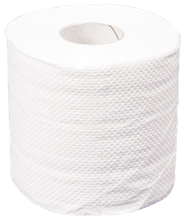 "JUMBO TOILET ROLL 2PLY 300MM (3"") CTN/6"