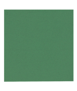 33CM GREEN NAPKIN 2PLY (CTN-2000)