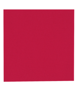 33CM RED NAPKIN 2PLY (CTN-2000)