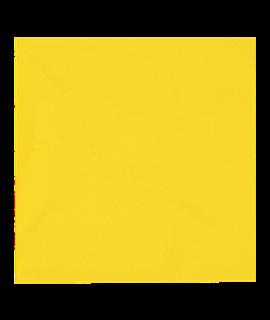 33CM YELLOW NAPKIN 2PLY (CTN-2000)